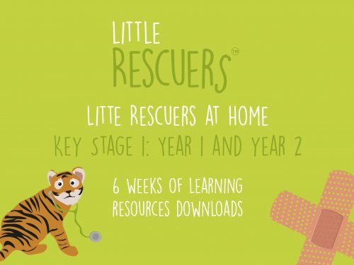 Little Rescuers at Home - learning resources key stage 1